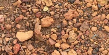spionk soil